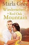 Wiedersehen in Red Oak Mountain: Roman