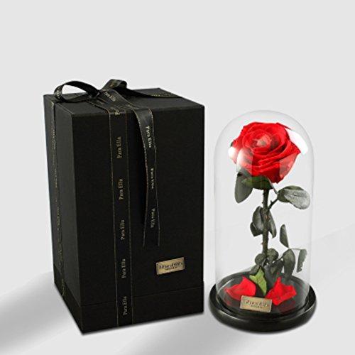 Rose éternelle cadeau jardinière,Ornements de verre Fleurs Fleurs artificielles Le jour de noël Décorations de mariage-A