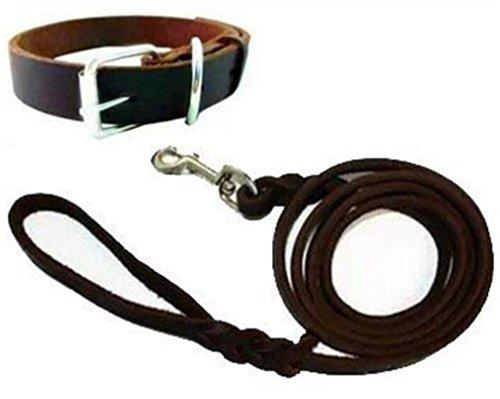 NWYJR Cane guinzaglio Harness collare Walking formazione