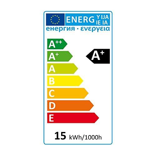 SEBSON A+  LED Lampe E27 warmweiß 15W, ersetzt 100W Glühlampe, 1450 Lumen, LED Leuchtmittel 160°, Globe, E27_GLOBE_G95_15W