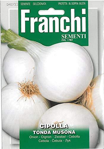 Portal Cool Franchi Samen Zwiebel Weiß Cipolla Tonda Musona Seed