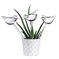 Garden Plant Watering Device Indoor Automatic Cute Birds Glass Watering Device