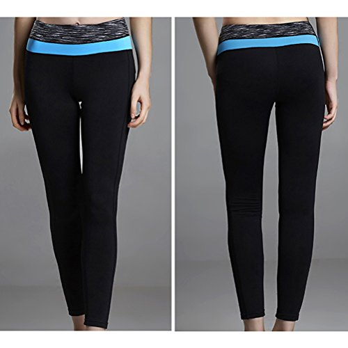 Zhhlaixing Womens yoga Pants Workout Running Fitness Leggings Trousers Q15-0035 blue