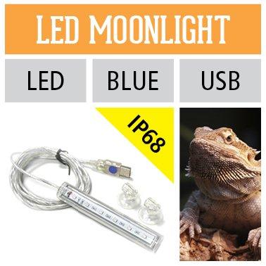 Arcadia LED Striplight Moonlight Terrarien Leuchte Lampe Bleuchtung Mondlicht