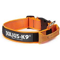Julius-K9 - Collier coloré et Gris