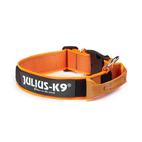 Julius-K9 Color & Gray Collar con La Manija, La Cerradura De Seguridad Y El Remiendo Intercambiables, 40 Mm (38-53 Cm), Naranja-Gris, Orange-Gray