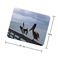 THEHO two long-beaked birds on gray wooden fence during daytime The Rubber Mouse Pad Is Designed For Playing Games Or Computer Office.