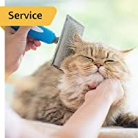 Cat Grooming - Cat (7 months and above) - Full Grooming and Dental care - In-Home