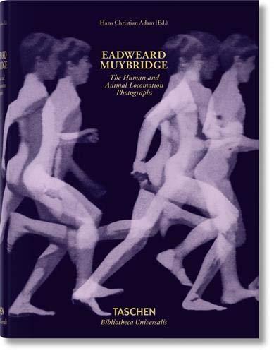 Muybridge. The Human and Animal Locomotion Photographs