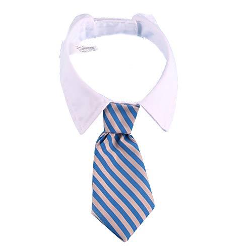 Katzen-Hundekrawatte Pet Kostüm Krawatte Kragen für Kleine Hunde Welpen Grooming Zubehör Blau Grau Bar ()
