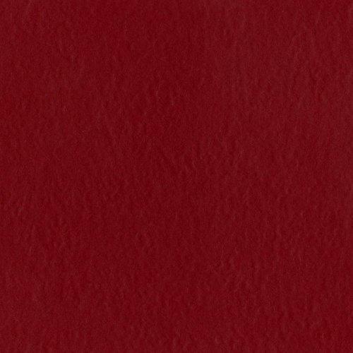 bazzill-basics-paper-25-fogli-di-prismatics-scrapbooking-arrossire-rosso-scuro