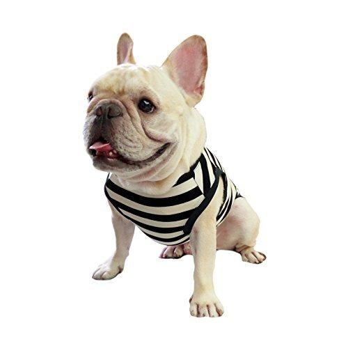 Frenchie Pet abbigliamento classico elegante nero a strisce bianche per french Bulldog o Pug uso comodo tessuto
