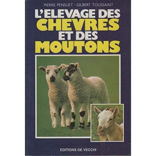 Elevage des chèvres et des moutons