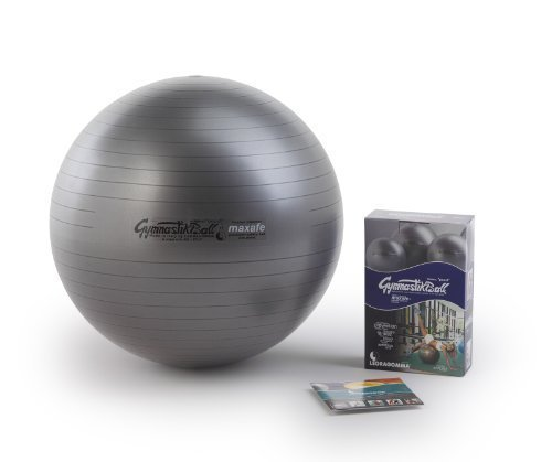 ORIGINAL Pezzi Gymnastik Ball Maxafe 65 cm grau *NEU*