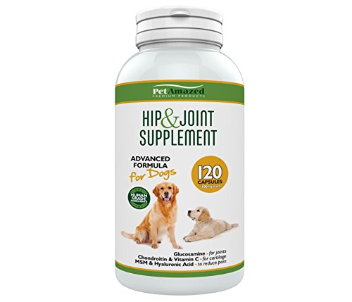 PetAmazed Hip & Joint Supplement for Dogs - Best