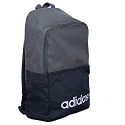 c20c10b9c411d Adidas Unisex Adult Lin CLAS Bp Day Gym Backpack - Grey Four F17 Black  ...