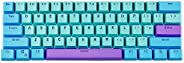 Taide Shine-Through Keycaps,61 Key ANSI Layout OEM Profile PBT Thick Keycaps for 60% Mechanical Keyboard Color