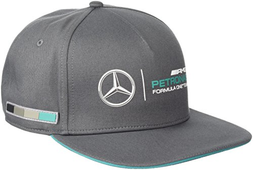 mercedes-amg-petronas-2015-fan-cap-grey