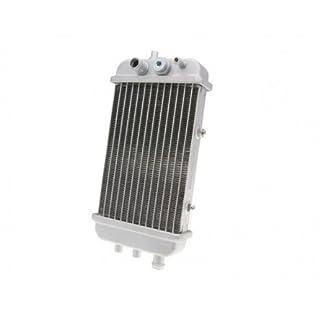 Kühler für Gilera-SMT 50 EBS -05 ZAPG12A
