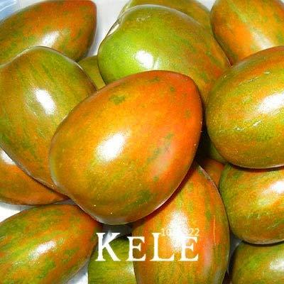 Pinkdose® Gemeinsame gelbe Tomaten Bonsai, Obst und Gemüse Topf Tomatenpflanzen Balkon für Hausgarten 100 Stück/Pack, 0bb6Rl: 9