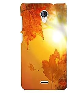 Citydreamz Sunshine\Nature Hard Polycarbonate Designer Back Case Cover For Meizu M2