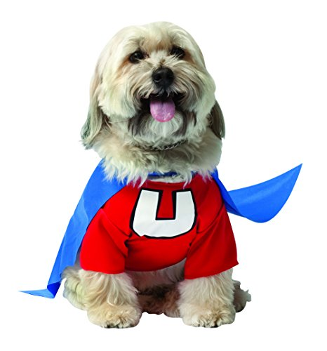 og-Hundekostüm. (Funny Halloween-kostüme-superhelden)