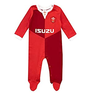 WRU Pijama Entera para Niños Bebés Wales Rugby 14