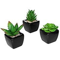Vosarea 3PCS Small Mini Potted Succulents Plants Arrangements Artificial Fake Plants in Pots Container for Table Desktop Home Decoration
