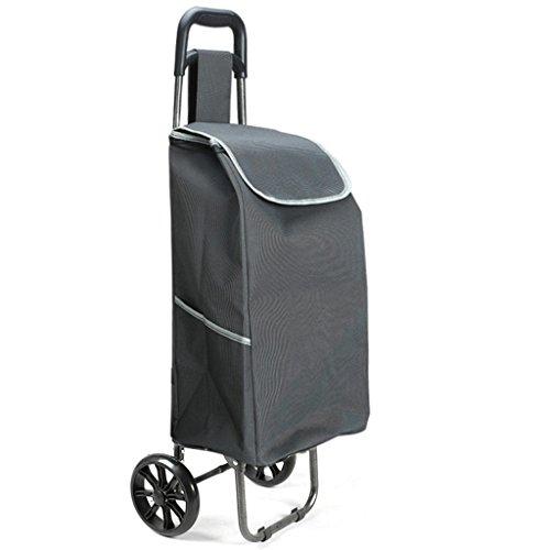 XIAOLVSHANGHANG SLC Laufkatze, Einkaufswagen, faltender Wagen-Anhänger-Laufkatze Portable-Haushalts-Kleiner Wagen, der Gebäude klettert kann bewegen (Farbe : Gray)