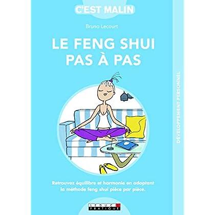 Le Feng Shui pas à pas, c'est malin