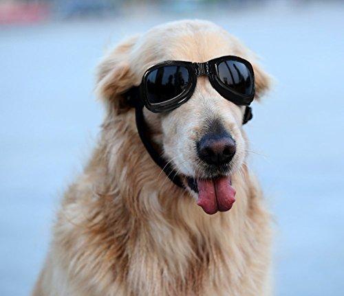 Namsan Hund Brille V-Sonnenbrille UV-Schutz Fashion Eyewear Goggles für Groß Hunde Haustier (schwarz & grau) (♥Schwarz)