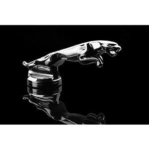 Arden Construction automobile GmbH aak 42000Jaguar Refroidisseur Figurine