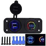 Samoleus 2 in 1 Motorrad Auto 4.2A Dual USB Ladegerät Adapter und LED Voltmeter Panel 12V-24V für Motorrad Auto Boot Marine (2 in 1 Panel)