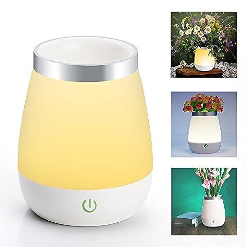 HF morning Tischlampe touch Nachtlicht Kinder Baby Nachtlampe Licht LED Nachttischlampe Stimmungslicht Kinderlampe Stimmung nacht lampe Schlafzimmer Vase Lampe Warm White dimmbare mit 3 Farben