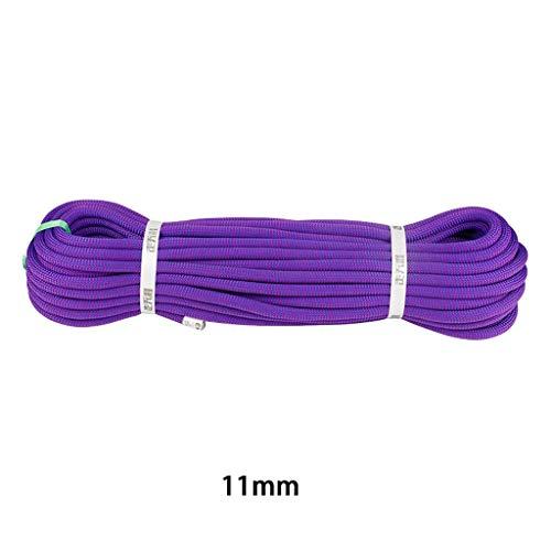 MLMHLMR Kletterseil Kraftseil tragen Seildurchmesser 11mm violett Kletterseil (Size : 40M)