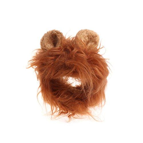 Autone Löwe Haar Kopfbedeckung für Kleine Hunde und Katzen, Löwe Mähne Perücke Puppy Cosplay Kostüm für Halloween Weihnachten Ostern Festival Party Aktivität, Dunkelbraun (Löwe Kostüm Haar)