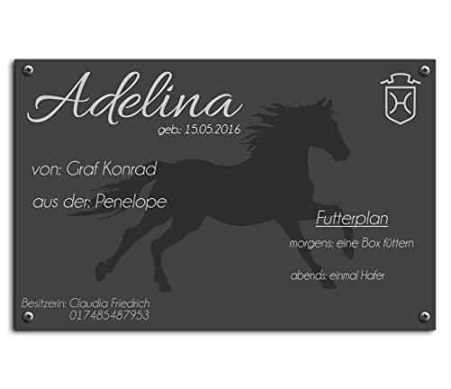 CHRISCK design Edle Stalltafel Boxenschild Namen und Abstammung Brandzeichen für Ihr Pferd 30x20 cm Pferdebox Pferde-Schilder aus bruchsicherem Hochglanz Acrylglas mit Entwurf | kratzfester UV-Druck