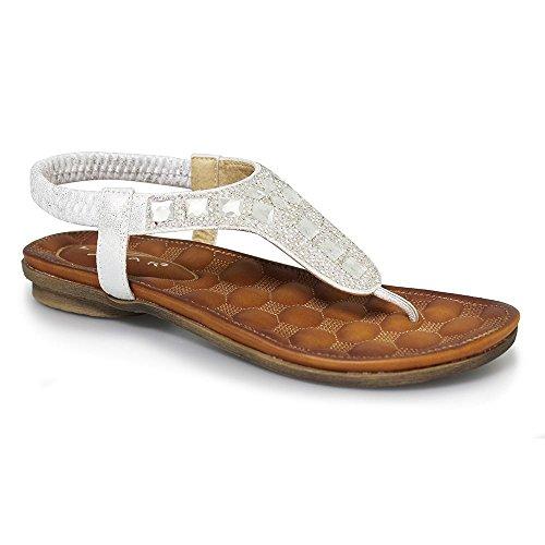 lunar-jlh701-zurich-glitter-sandal-6-silver