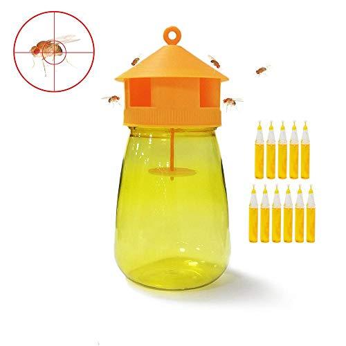 AOLVO - Trampa para Moscas de Frutas, Drosophila Trap Fly Insect Trap con Lure,Fruit Fly Catcher Reutilizable Natural No tóxico para Cocina Ventana jardín Orchard Interior/Exterior
