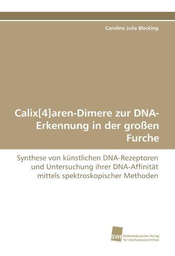 Calix[4]aren-Dimere zur DNA-Erkennung in der großen Furche: Synthese von künstlichen DNA-Rezeptoren und Untersuchung ihrer DNA-Affinität mittels spektroskopischer Methoden