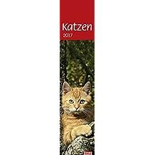 times&more Katzen long - Kalender 2017