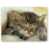 Yuxinke Sleeping Cozy Cat zerbino in gomma antiscivolo antibatterico throw tappeto zerbino per bagno camera cucina per esterni ed interni, #1, 50 x 80