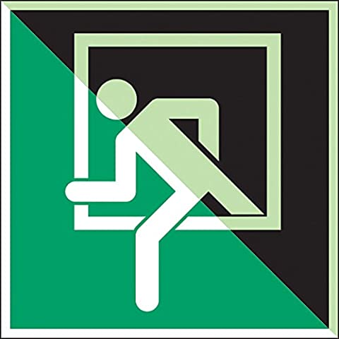 Brady 836586 Emergency And First Aid Class C Polyester Sign, Emergency Window, 150 mm x 150 mm, Photoluminescent on Green