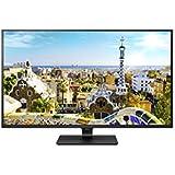 LG IT Products 43UD79-B Monitor 107,98 cm (42,51 Zoll) (IPS, 4K, 4x HDMI, 5ms) schwarz