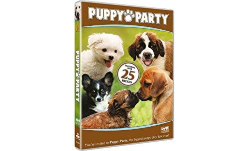 Puppy Party [DVD-R] [2011]