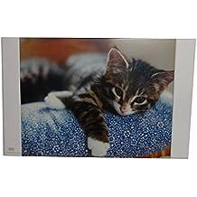 Schreibtischunterlage 44x35cm mit Katzenmotiv Größe