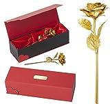 Remmo&Love LUXUS Goldene Vergoldete Rose mit Gravur Valentinstag Jahrestag Hochzeitstag Weihnachtsgeschenk Weihnachten Geburtstag Romantisches Ich liebe Dich Ehefrau Liebes Geschenk Idee