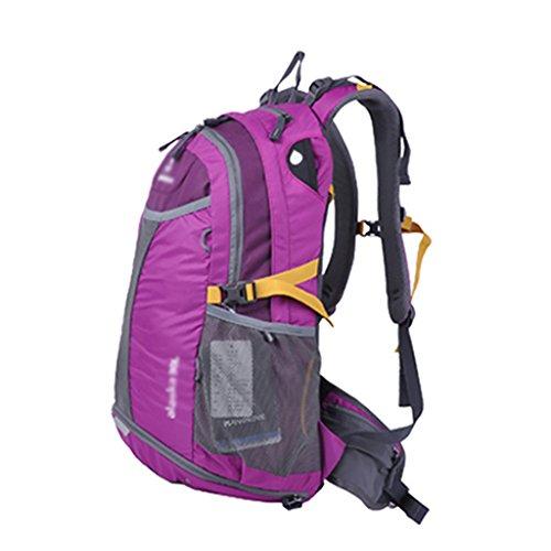 HWLXBB Outdoor Bergsteigen Tasche Männer und Frauen 30L Wasserdichte Mehrzweck-Bergsteigen Tasche Wandern Camping Bergsteigen Freizeit Rucksack Rucksack A