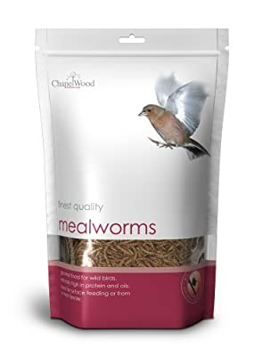 Chapelwood Mealworms 1kg by Chapelwood