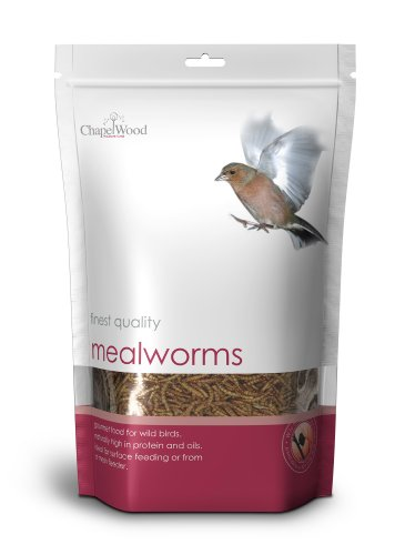 Chapelwood-Mealworms-1kg